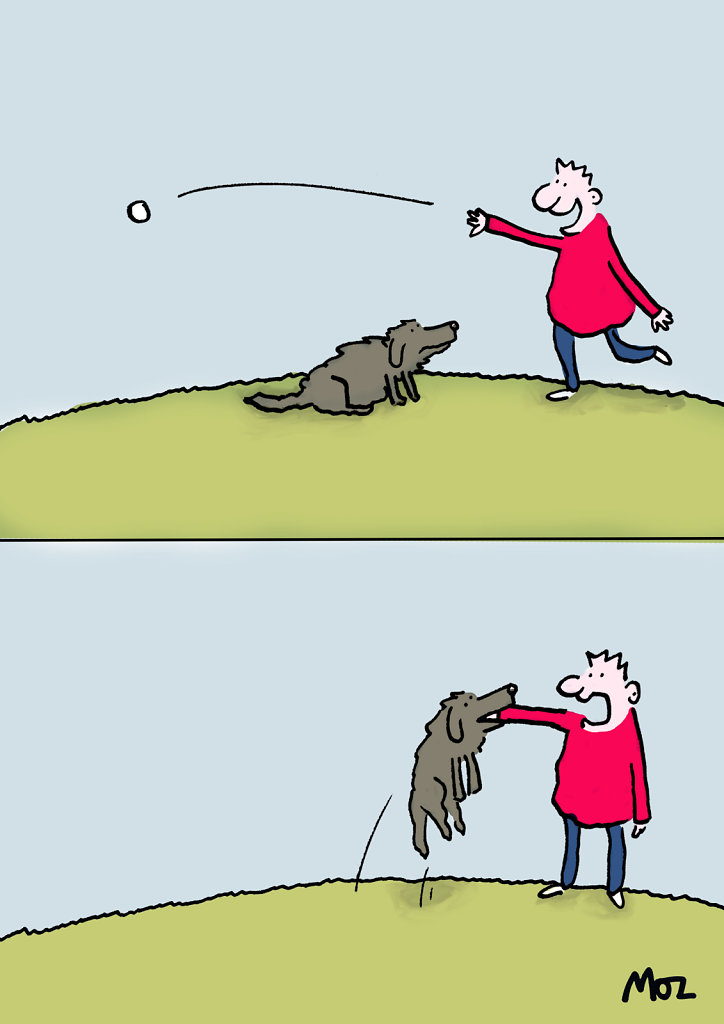 Dog-Fetch.jpg